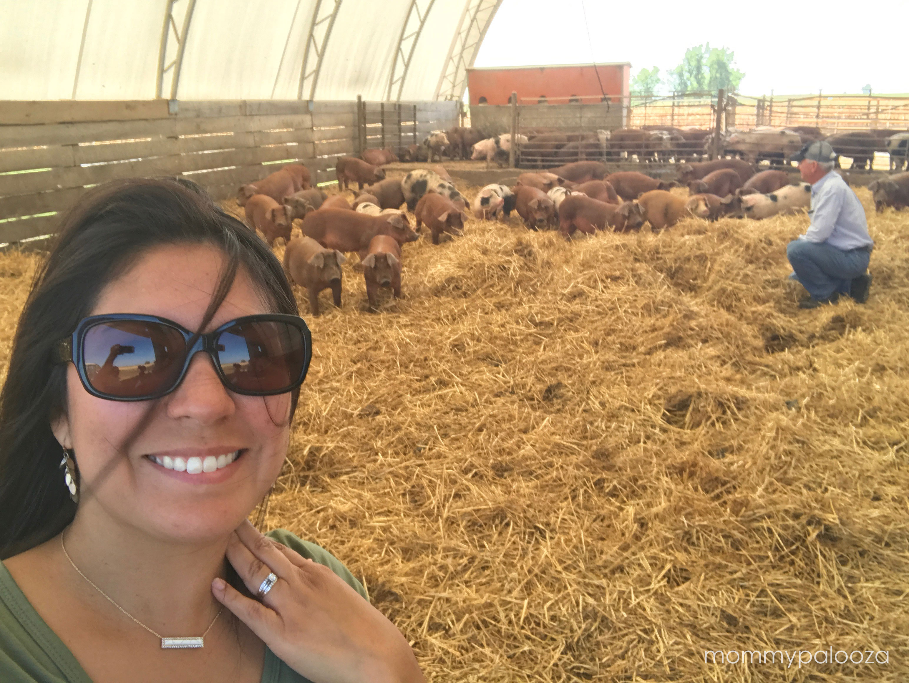 Highlights From The Farm Food Tour Of Kansas Mommypalooza Kansas City Lifestyle Blogger